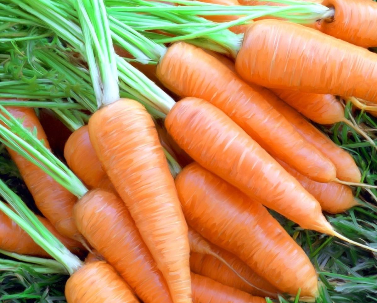 Как из моркови сделать флейту
