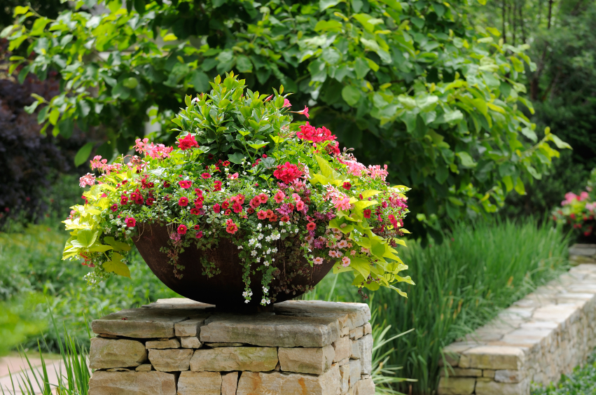 сад в итальянском стиле вазон